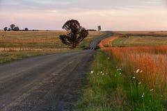 Дорога гравия освободившееся государство Стоковое фото RF
