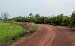 Дорога гравия Стоковая Фотография