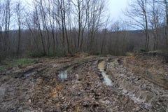 Дорога грязи после дождя стоковая фотография