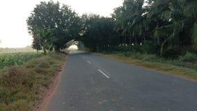 Дорога деревни стоковое фото rf