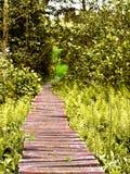 дорога деревянная Стоковая Фотография