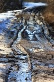 Дорога леса весны Стоковые Фотографии RF