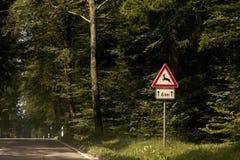Дорога животных перекрестная Стоковая Фотография RF
