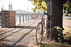 Дорога зафиксировала велосипед на улице города под деревом Стоковое фото RF