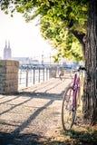Дорога зафиксировала велосипед на улице города под деревом Стоковое Фото