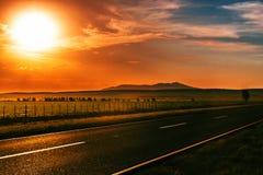 Дорога захода солнца Стоковые Фотографии RF