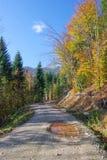 дорога земли Стоковая Фотография
