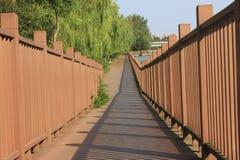 Дорога зеленого цвета города города Jiaxing Стоковая Фотография RF