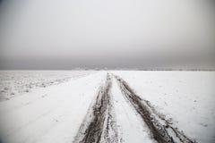 Дорога зимы в ландшафте степи Стоковая Фотография RF