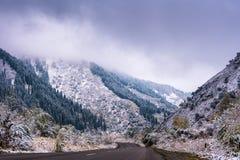 Дорога зимы в горах лес Пригонк-дерева предусматриванный в тумане mis Стоковые Изображения RF