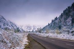 Дорога зимы в горах лес Пригонк-дерева предусматриванный в тумане mis Стоковая Фотография RF