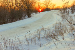 Дорога зимы в древесине Стоковое Изображение RF