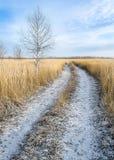 Дорога зимы в России стоковое изображение