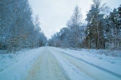 Дорога зимы в следе сумерк леса Стоковое Изображение RF