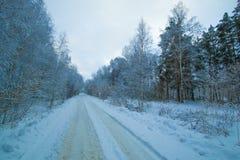 Дорога зимы в следе сумерк леса Стоковые Фото