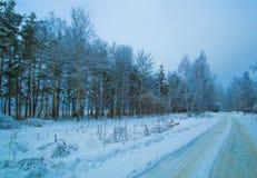 Дорога зимы в следе сумерк леса Стоковая Фотография