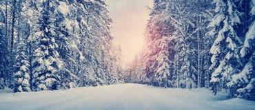 Дорога зимы в утре Стоковая Фотография RF