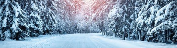 Дорога зимы в утре Стоковая Фотография