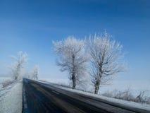 Дорога зимы с ясным небом стоковые изображения