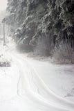 Дорога зимы Стоковое Фото