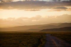 Дорога злаковика Стоковое фото RF