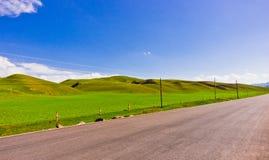 Дорога злаковиков Стоковое Изображение RF