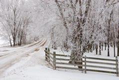 Дорога изморози стоковые фотографии rf