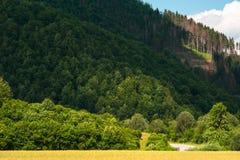 Дорога исчезая среди гор Стоковое Фото