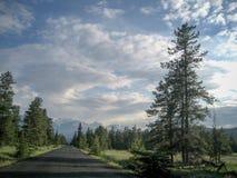 Дорога и ландшафт в национальном парке Banff Стоковое Изображение