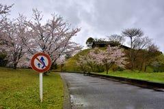 Дорога и знак всходят на борт в поле Сакуры, около парка фарфора Tian, сага-Кен, Япония Стоковое Изображение