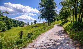 Дорога или путь леса в древесинах и горах в Словении Стоковые Изображения