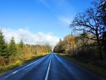 Дорога и красочные деревья осени, Литва Стоковые Фотографии RF