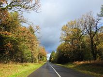 Дорога и красочные деревья осени, Литва Стоковые Изображения RF
