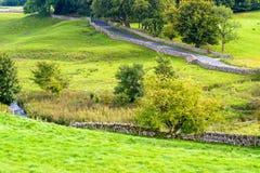Дорога и поток в сельской местности Стоковое Изображение