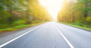 Дорога и древесина осени. Стоковые Фото