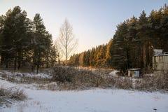 Дорога и солнце леса зимы Стоковая Фотография