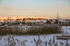 Дорога и солнце леса зимы Стоковые Изображения RF