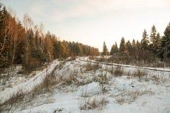Дорога и солнце леса зимы Стоковые Фото
