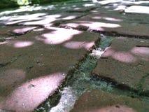 Дорога камня Стоковые Фотографии RF