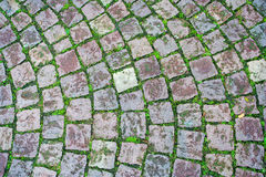 Дорога кирпича травы булыжника стоковые фото