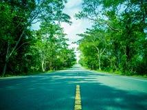 Дорога концепции к успеху стоковое фото rf