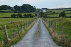 Дорога которая водит путь Стоковые Изображения RF