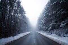 Дорога которая потеряла в туманном Стоковая Фотография RF