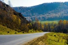 Дорога которая проходит среди гор, Стоковая Фотография