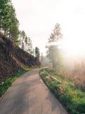 Дорога, который нужно путешествов Стоковые Фото