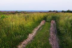 Дорога, который нужно field Дорога к детству! стоковые изображения rf