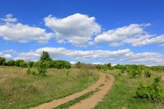 Дорога колейности в степи Стоковые Фото