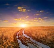 Дорога колейности в степи стоковое изображение
