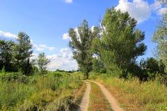 Дорога колейности в степи Стоковое Фото