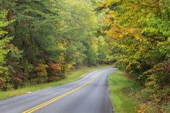 Дорога кривой осенью Стоковые Фото